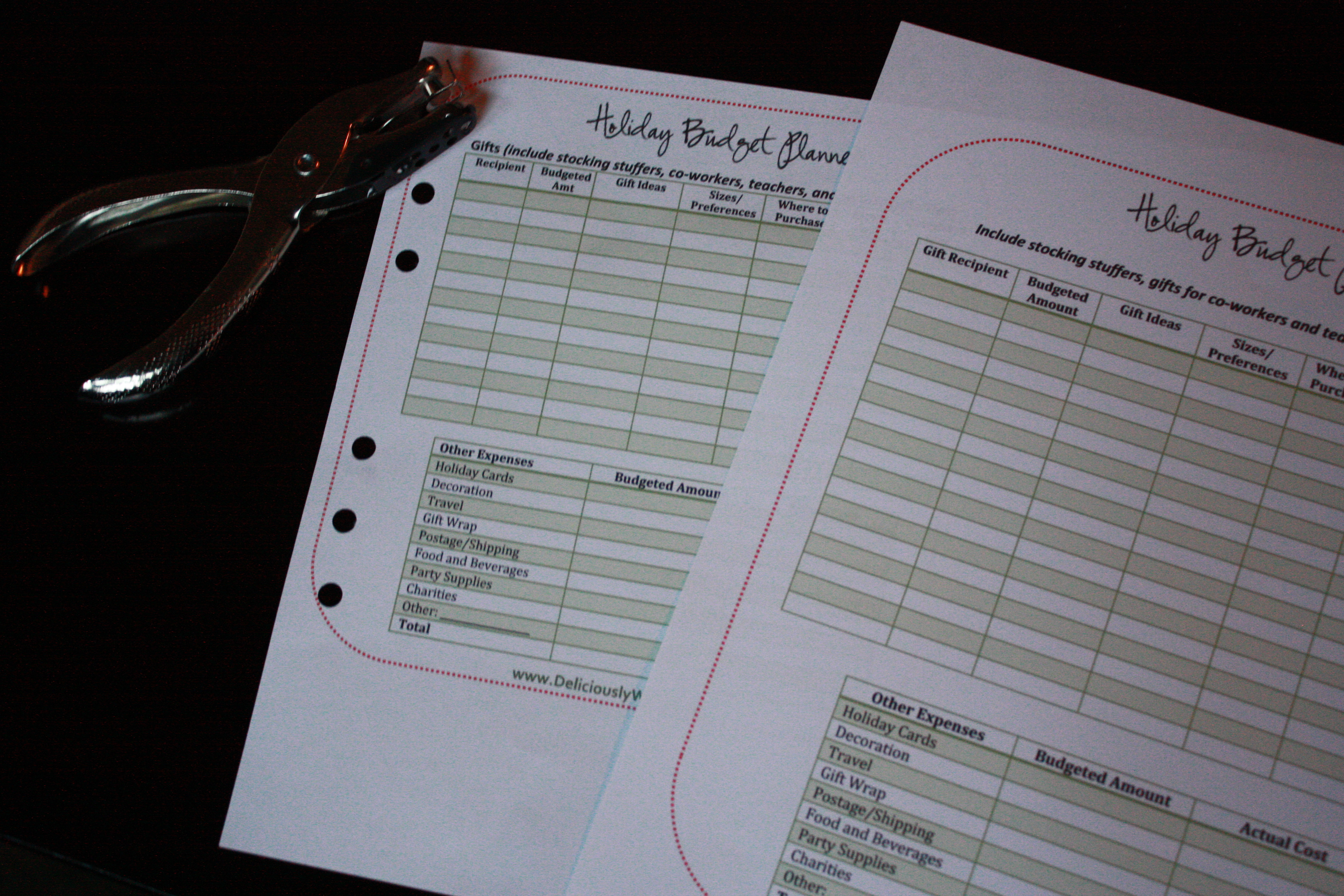 family or business holiday budget planner template